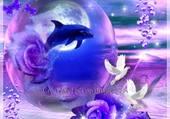 dauphin et colombes