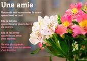 Puzzle l amitie
