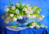 bouquet sur fond bleu par hélène