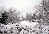 Chasselay sous la neige
