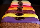 choux multicolores