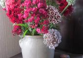 oeillets de poète et fleurs de poireaux