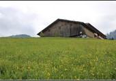 Une vieille ferme.