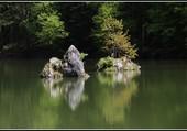Les refelts sur le lac