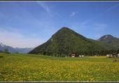 La montagne verte