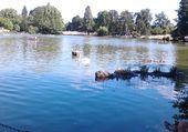 lac daumesnil- ile de reuilly