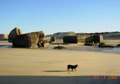 Bloqos sur la plage