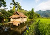 Asie, Thaïlande