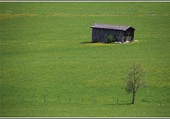 Cabane perdue dans la nature