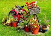 Puzzle Une byciclette fleurie