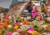 maison et fleurs