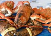 homard et araignee en plateau