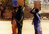 Puzzle Les indiennes en sari
