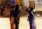 Les indiennes en sari