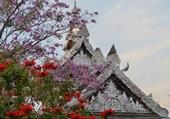 Fleurs et monuments