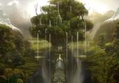 L'arbre des miracle