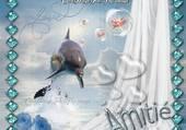 le saut du dauphin