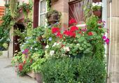 Maison fleurie à Luxeuil