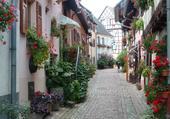 Puzzle Rue très fleurie
