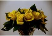 Un simple bouquet