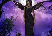femme papillon au clair de lune