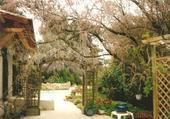 jardin Serge