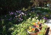 jardin pr Serge