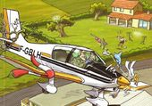 Pilote maladroit