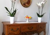 Desserte et orchidées .
