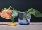 Rose fannée