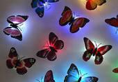 Puzzle papillons multicolores