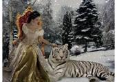 la reine et son tigre