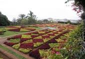 Jardin botanique de Funchal