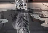 tigre blanc et chaton