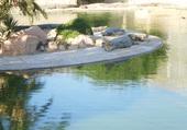 Puzzle ferme aux crocodiles