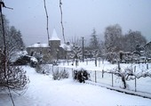 Arbas sous la neige