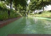 Puzzle coulée verte à Paris