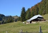 Alpage fribourgeois