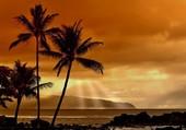 rêve de vacances