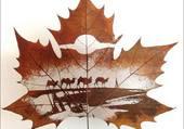 Puzzle feuille d automne
