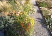 Puzzle Fleurs d'automne