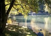 L'automne sur le lac