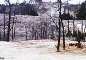 montagne de yellowstone