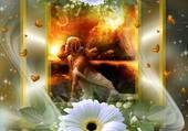 des fleurs du vent et des coeurs