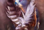 l aigle bleu