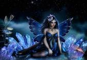 le papillon parle au flamant
