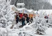 Vue d'un marché de Noël