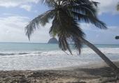 Puzzle Plage de Martinique