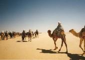 Puzzle vacances en Tunisie