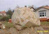 Une pierre dans mon jardin